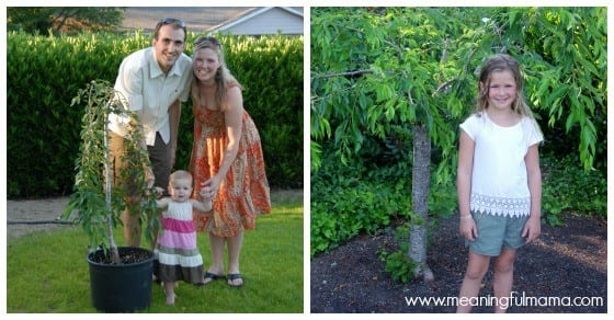 Plant a Tree on a First Birthday