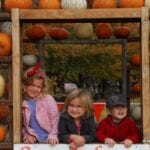 Day #299 – Pumpkin Patch and Corn Maze