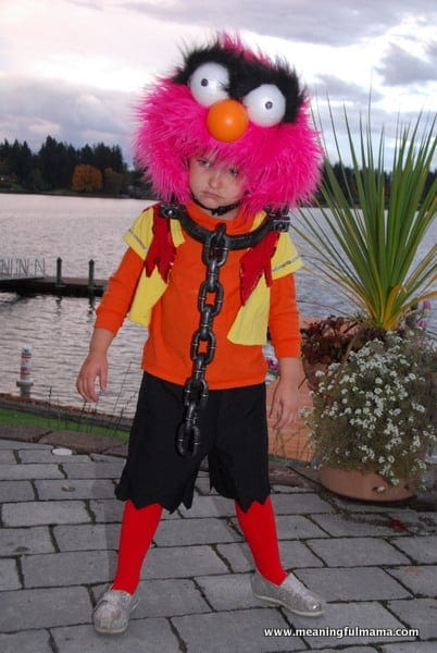 DIY Animal Costume from the Muppets
