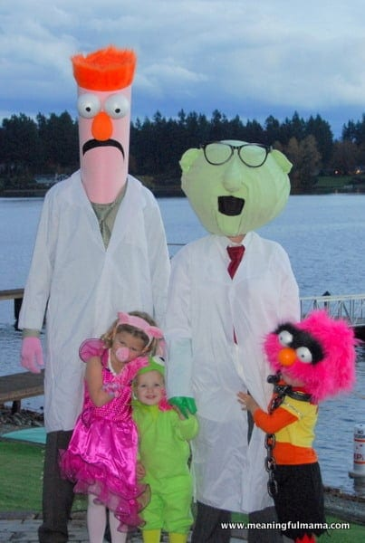 1-Muppets Costumes