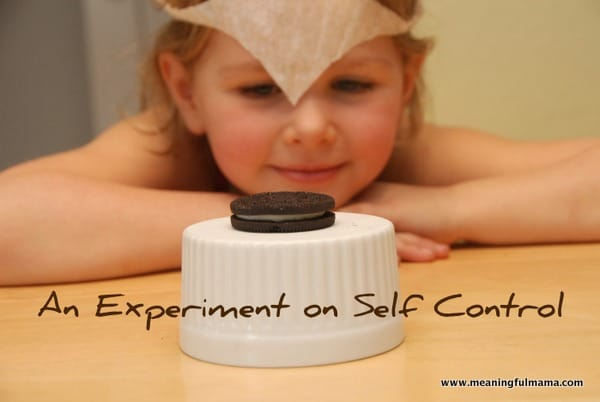 Self Control and the Mischel Psychology Experiment