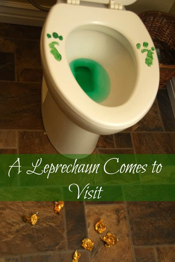We Lure a Leprechaun and He Pees in the Toilet