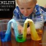 Flexibility – Teaching Kids Character through Science