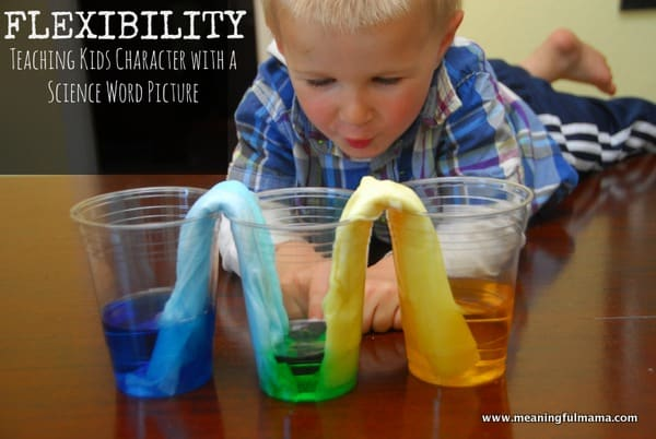 1-#flexibility #science experiment #absorbancy #kids-001