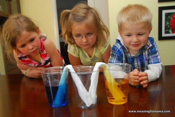 1-#flexibility #science experiment #absorbancy #kids-015