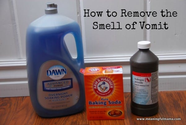 Baby vomit smell on carpet meze blog for How to clean vomit from floor