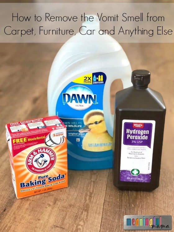 How To Get Smell Out Of Carpet >> How To Remove The Vomit Smell From Carpet Furniture Car