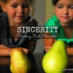 Sincerity with the Real vs. Fake Test