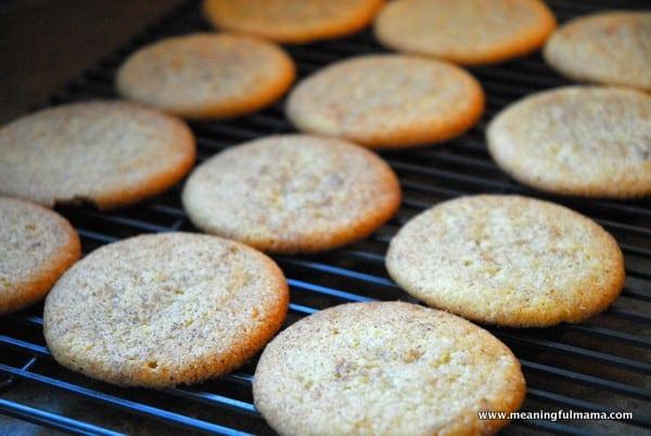 1-#snickerdoodle #ice cream sandwich #cookies #mexican dessert-001