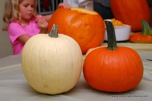 1-#polka dot pumpkins #two toned #apple corer-004