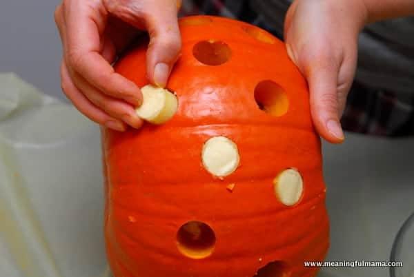 1-#polka dot pumpkins #two toned #apple corer-015
