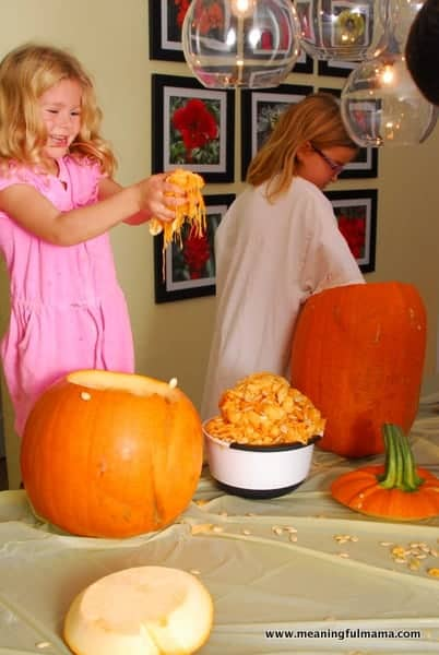1-#polka dot pumpkins #two toned #apple corer