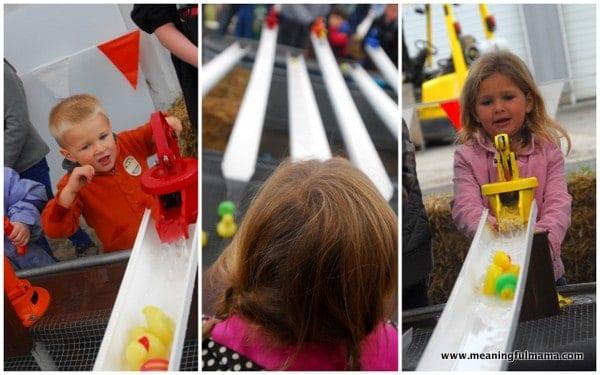 1-#pumpkin patch #2013 #corn maze