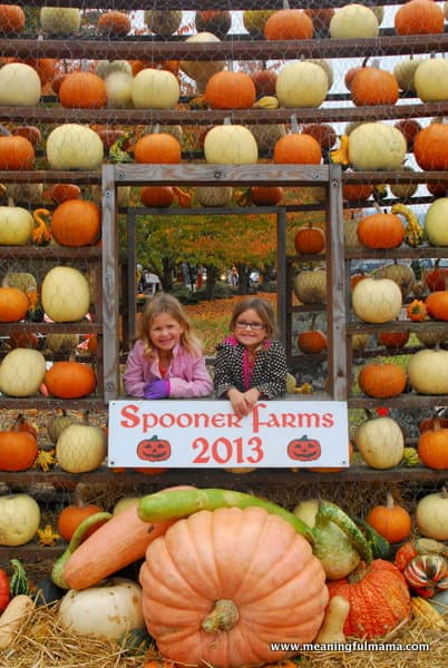 1-#pumpkin patch #corn maze #spooners-022