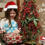 10 Tips for Thriving During the Holidays