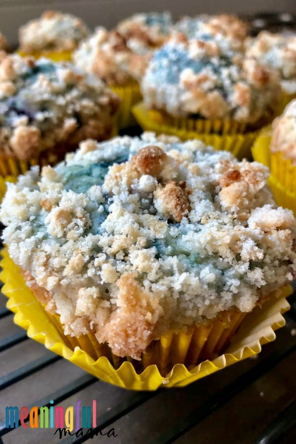 Homemade Blueberry Muffins with a Crumb Topping