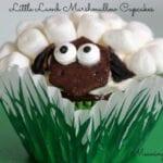 Lamb Marshmallow Cupcakes