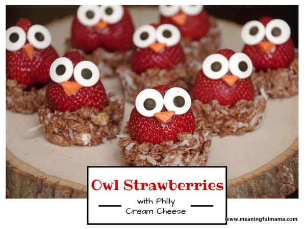 1-Owl Strawberries-5 Philadelphia cream cheese