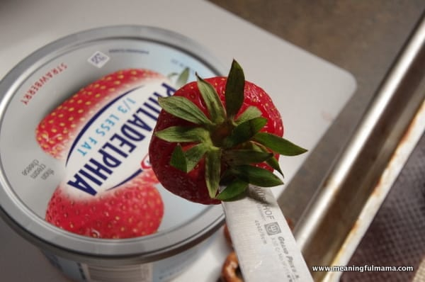 1-owl strawberries food philadelphia cream cheese spread Mar 31, 2014, 9-32 AM