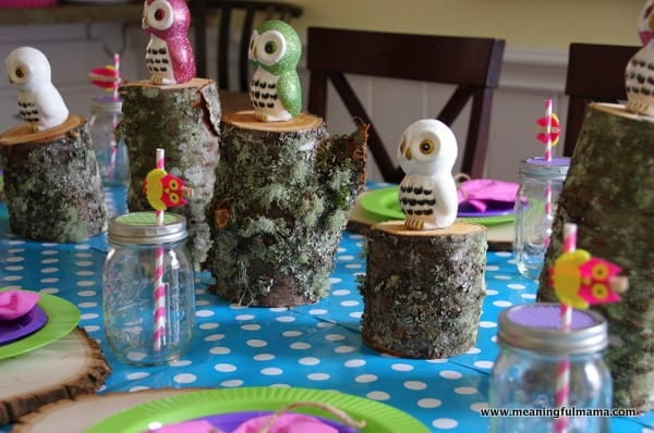 1-owl birthday party food decoration ideas kenzie 2014 Apr 5, 2014, 10-36 AM