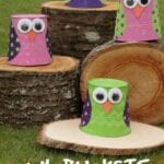 Owl Bucket Craft