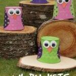 Owl Bucket Craft