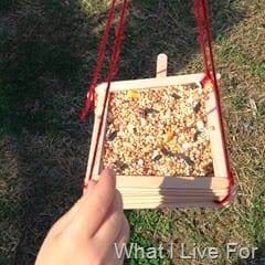 popsicle stick bird feeders