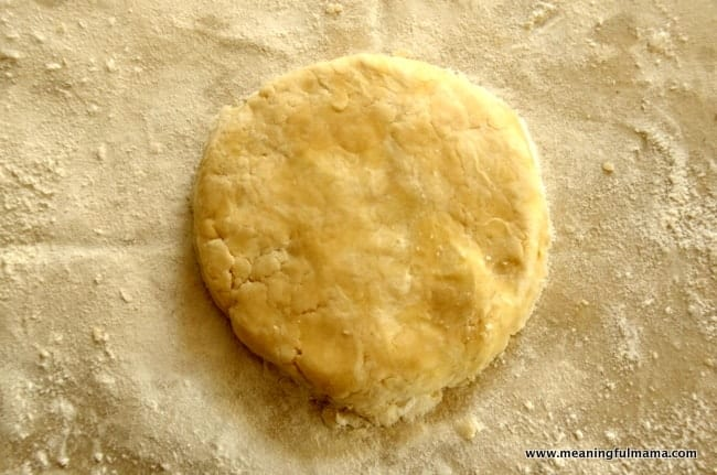 1-how to make a homemade pie crust Jun 20, 2014, 2-10 PM