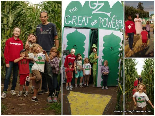 1-pumpkin patch schilter farms 2014 corn maze 3 Oct 25, 2014, 8-43 AM