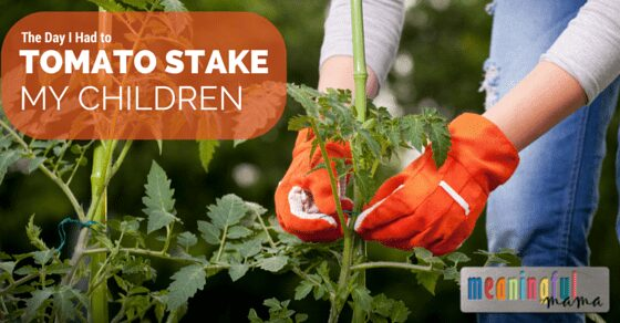 How to Tomato Stake a Child