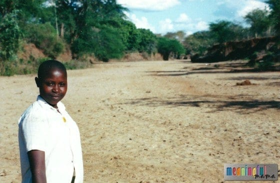 Dry Riverbed in Africa
