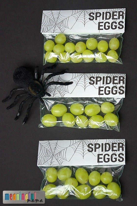 Spider Eggs Printable for Harvest Party, Spider Unit or Halloween
