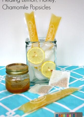 Healing Honey Lemon Vanilla Popsicles