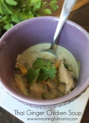 Thai Ginger Chicken Soup