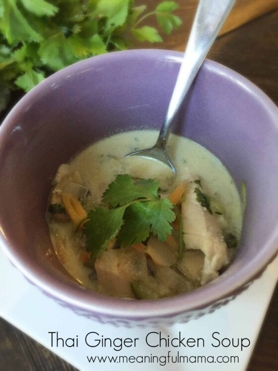 Thai Ginger Chicken Soup Recipe