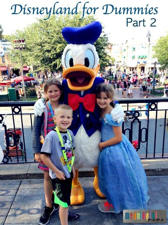 Disneyland for Dummies - Best Tips for Disneyland Beginners