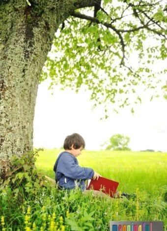 Creative Summer Reading Ideas