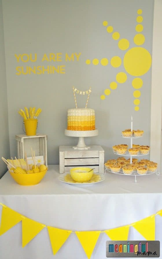 Sunshine Birthday Party Ideas - Kenzie 7 Apr 2, 2016, 12-11 PM
