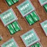 Chocolate Mint Bible Study Invitations
