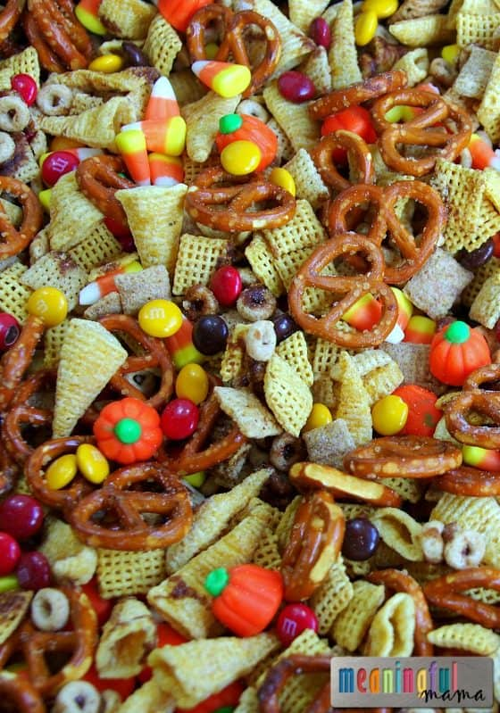 salty-sweet-pumpkin-spice-harvest-chex-mix-oct-23-2016-12-46-pm