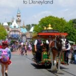 Taking Your Sensory Processing Child to Disneyland