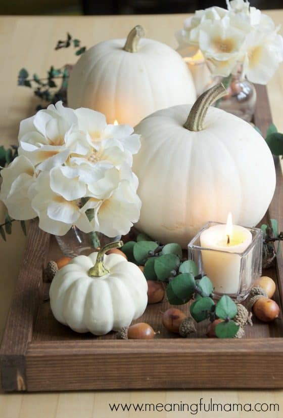 Contemporary Fall Centerpiece Idea with White Pumpkins