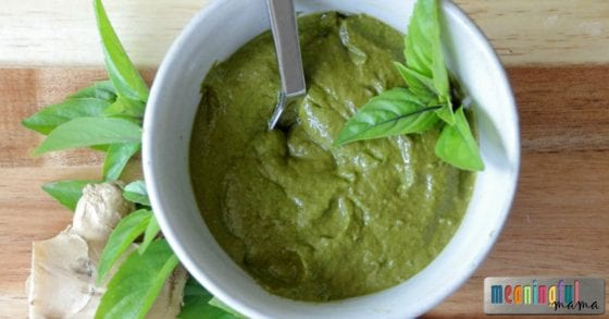 Red Thai Basil Pesto Sauce