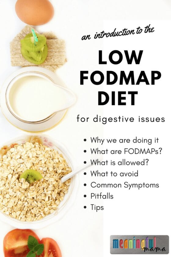 An Introduction to the Low FODMAP Diet for Digestive Issues