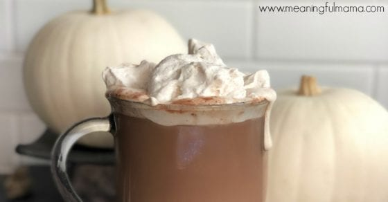 Best Pumpkin Spiced Whipped Cream Recipe
