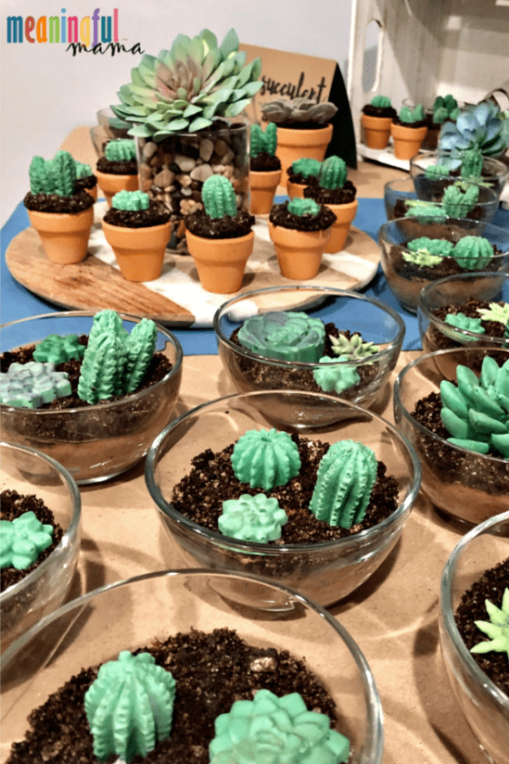 Succulent Dessert Table for Baby Shower