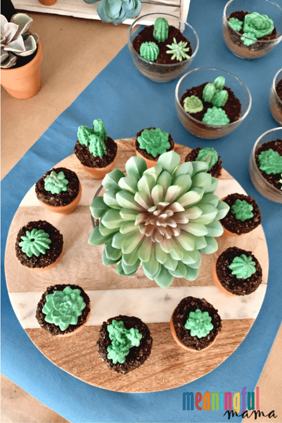 succulent cupcakes on wood tray