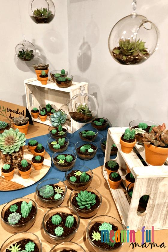 succulent dessert ideas